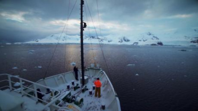 Expedition Antarctic